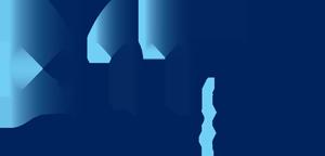 Laser DenMat logo