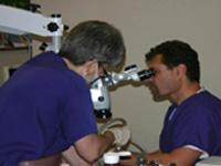Mikroszkop GlennVanAs