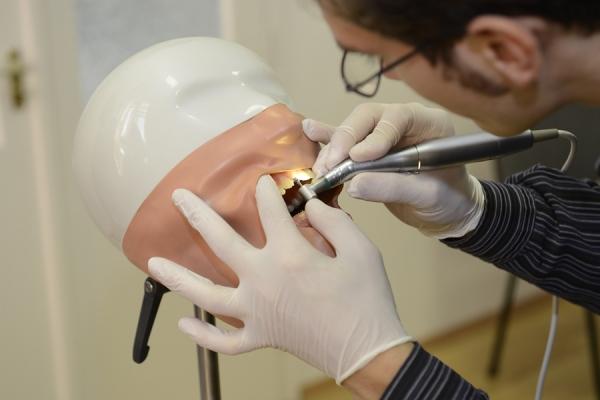 dentis-kurzus-gyakorlat-500B1BD84-F679-9088-14AD-F6682FFA26D0.jpg